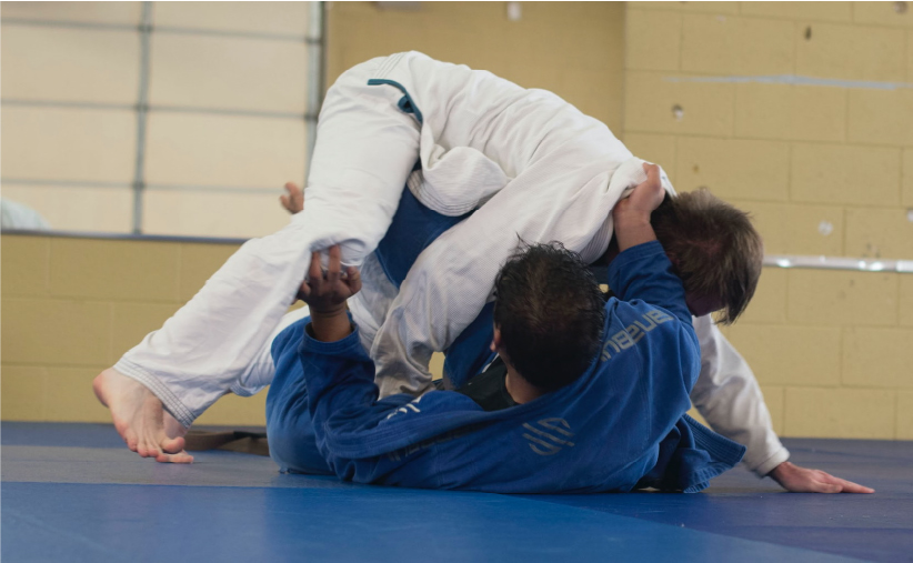 BJJ for MMA